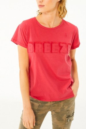 REMERA BORDADA BREEZE CON FLECOS